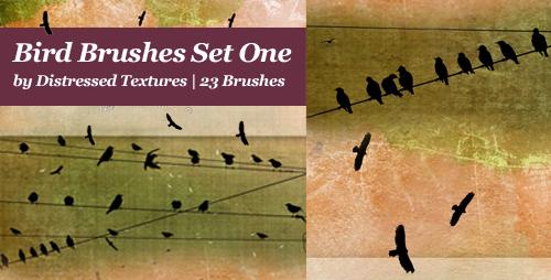Bird Brushes Set 1 Distressed Textures