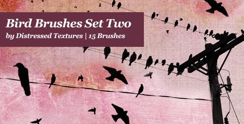 Bird Brushes Set 2 Distressed Textures